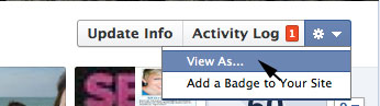 View Facebook Profile as Public